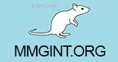 MMGINT.ORG