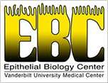 Epithelial Biology Center
