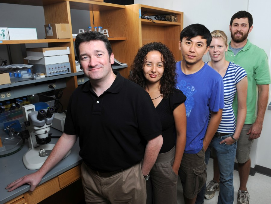 Kevin Currie, PhD, front left, and his research staff investigate voltage-gated calcium channels.
