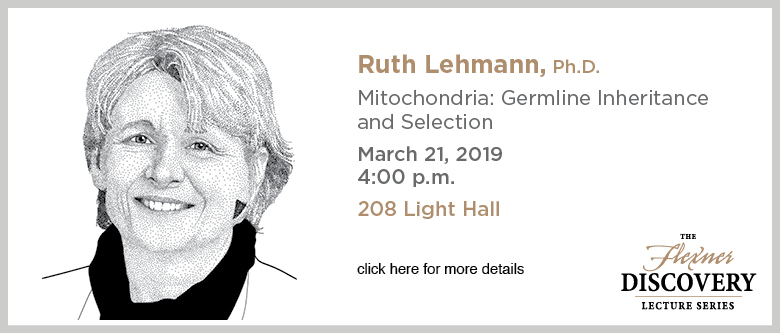 Discovery Lecture Series - Lehmann - March 21, 2019