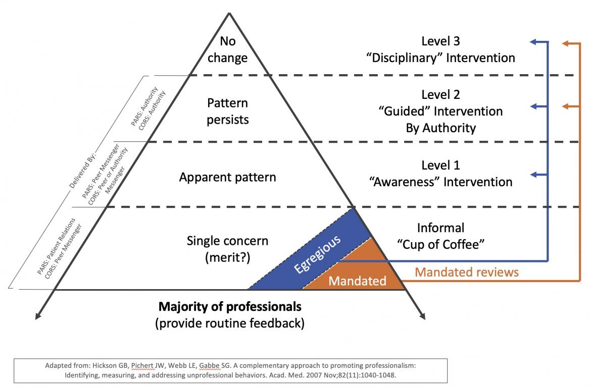Pyramid for Promoting Reliability and Professional Accountability