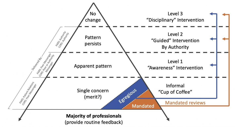Promoting Professionalism Pyramid