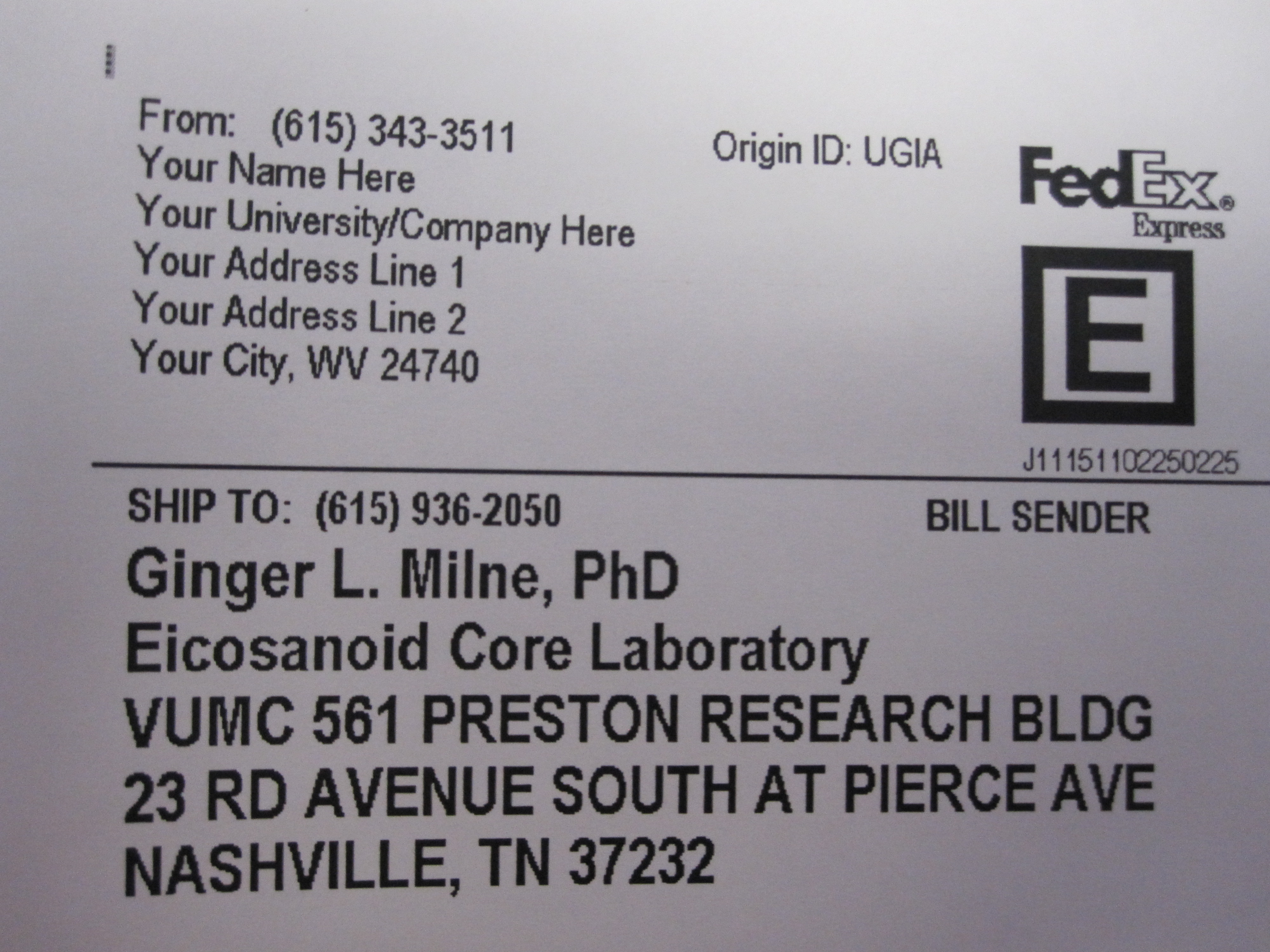 Example FedEx Shipping Label