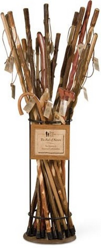 examaples of walking sticks and canes set 2