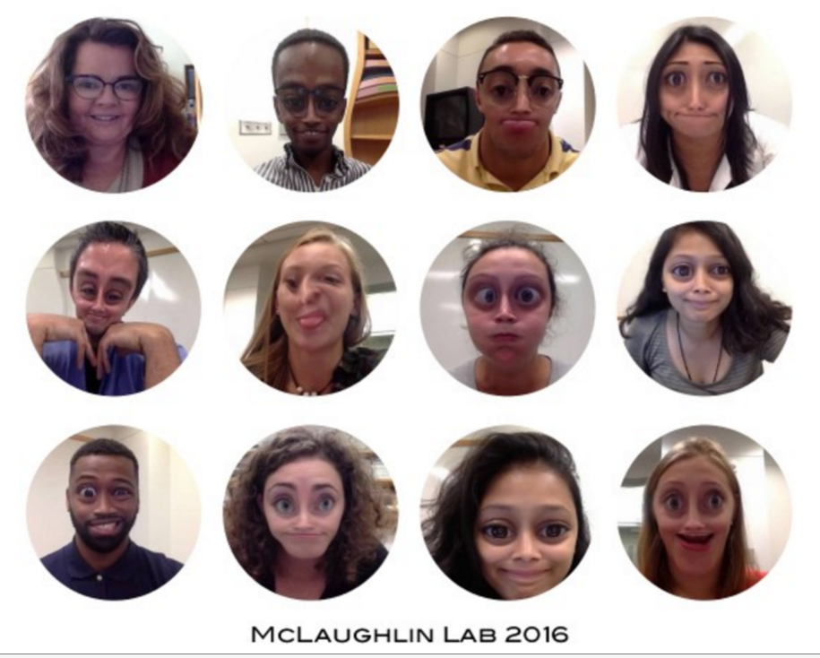 collage lab 2015