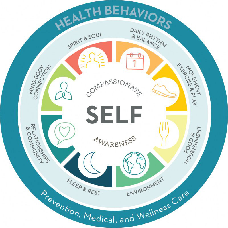 healthy life pin wheel diagram